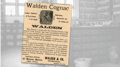 Walden Cognac Vintage Ad